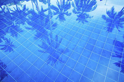 Photograph - Reflection Of Palm Trees Over Swimming by Liunian