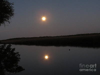 Photograph - Reflection Of Super Moon by Fortunate Findings Shirley Dickerson