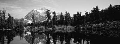 Reflection Of Trees And Mountains Art Print