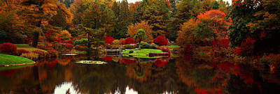 Golden Gate Park Photograph - Reflection Of Trees In Water, Japanese by Panoramic Images