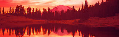 Fir Trees Photograph - Reflection Of Trees In Water, Tipsoo by Panoramic Images
