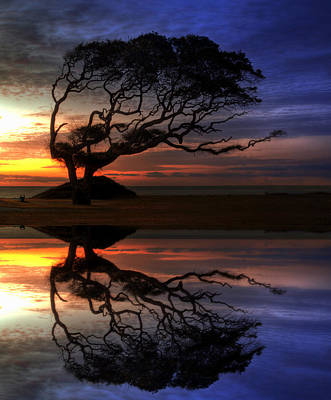Jekyll Island Photograph - Reflection Of Troubled Times by Greg and Chrystal Mimbs