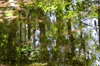 Abstractions From Nature Photograph - Reflection Of Woods by Sonali Gangane