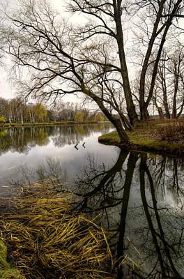 Photograph - Reflection by Oleksandr Maistrenko
