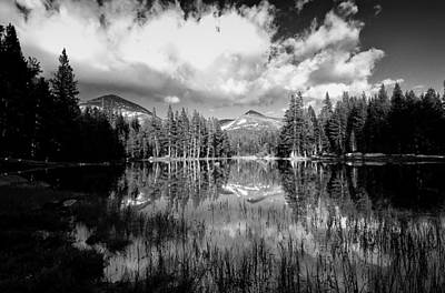 Photograph - Reflection Pond by Cat Connor
