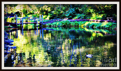 Photograph - Reflection Pond With Frame by Mindy Bench