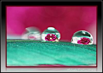 Photograph - Reflections 2 by Michaela Preston