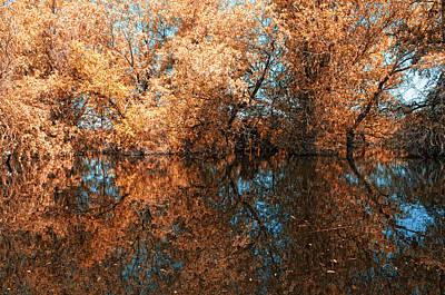 Reflections 3 Art Print by Vessela Banzourkova