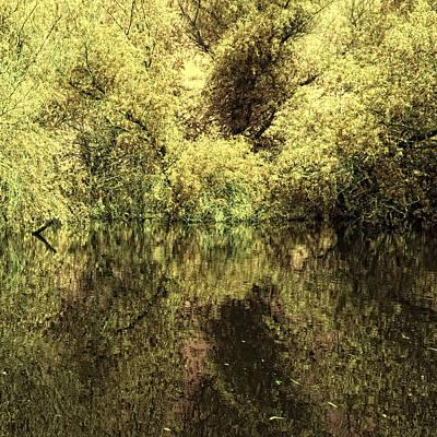 Reflections 4 Art Print by Vessela Banzourkova