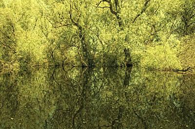 Reflections 5 Art Print by Vessela Banzourkova