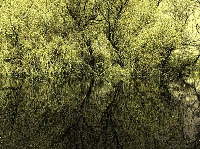 Reflections 8 Art Print by Vessela Banzourkova