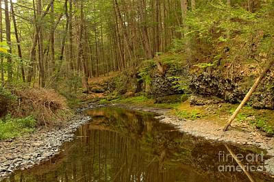Photograph - Reflections Along Raymondskill by Adam Jewell