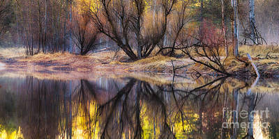 Photograph - Reflections by Anthony Bonafede