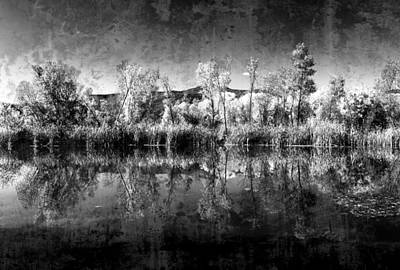 Photograph - Reflections At Dead Horse Ranch Arizona Dsc08730 by Greg Kluempers