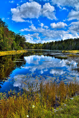 Photograph - Reflections At Fly Pond by David Patterson