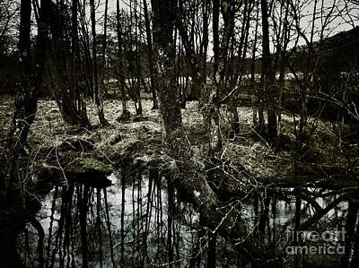 Achieving - Reflections at GlenOrchey  by Joan-Violet Stretch