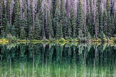 Reflections At Lightning Lake Art Print by Marie  Cardona