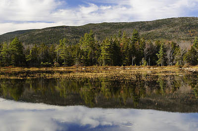 Fall In New England Photograph - Reflections At Lily Pond by Luke Moore