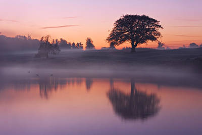 Photograph - Reflections In A Lake At Dawn / Maynooth by Barry O Carroll
