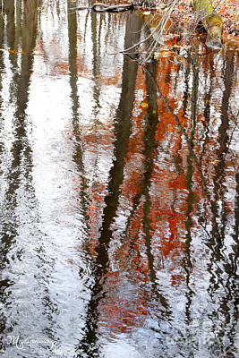 Photograph - Reflections In A Stream  by Mariarosa Rockefeller