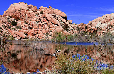 Photograph - Reflections In Barker Dam By Diana Sainz by Diana Raquel Sainz