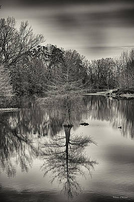 Reflections In Black And White Art Print by Yvonne Emerson AKA RavenSoul