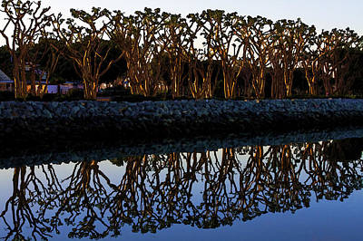 Art Print featuring the photograph Reflections In First Light by Gary Holmes