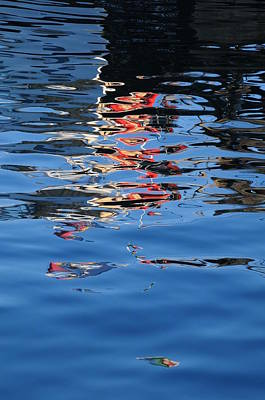 Photograph - Reflections In Red by Susie Rieple