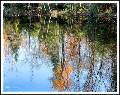 Photograph - Reflections In Still Waters by Mariarosa Rockefeller