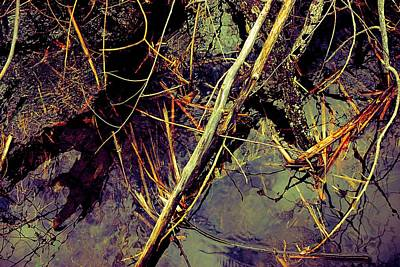 Photograph - Reflections In The Creek by Beth Akerman