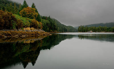 Photograph - Reflections In The Fog- Knight Inlet..bc by Tim Bryan