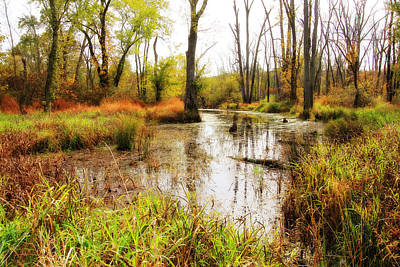 Digital Art - Reflections In The Marsh by Trina  Ansel