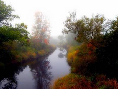 River Reflection Art Print by Karen Cook
