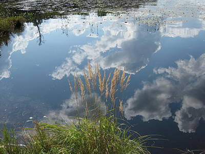 Photograph - Reflections In The Water by Carolyn Reinhart