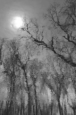 Photograph - Reflections In Water by Kathleen Scanlan