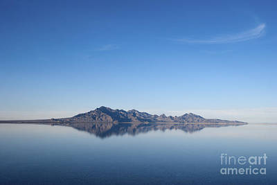 Photograph - Reflections by Jackie Farnsworth