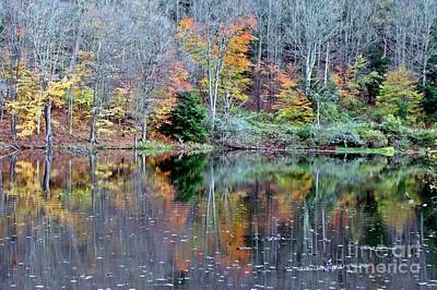 Photograph - Reflections Of Autumn by Christian Mattison