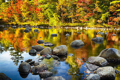 Reflections Of Autumn Foliage In A River Art Print