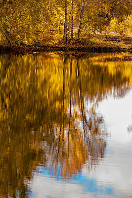 Photograph - Reflections Of Autumn by Mary Jo Allen