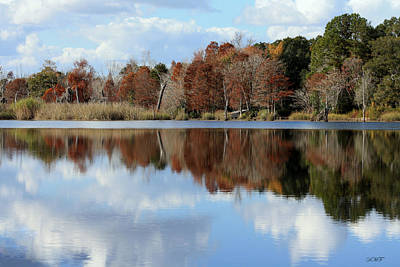 Photograph - Reflections Of Color by Debra Forand