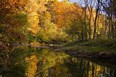 Photograph - Reflections Of Fall by Cara Moulds