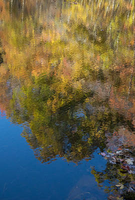 Photograph - Reflections Of Fall Colors by Douglas Barnett