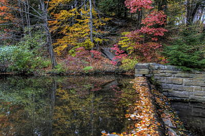 Photograph - Reflections Of Fall by David Dufresne
