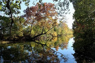 Photograph - Reflections Of Fall by Edward Hamilton