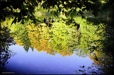 Red Photograph - Reflections Of Fall by LeeAnn McLaneGoetz McLaneGoetzStudioLLCcom