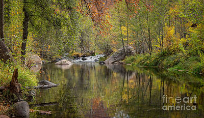 Photograph - Reflections Of Fall by Marianne Jensen