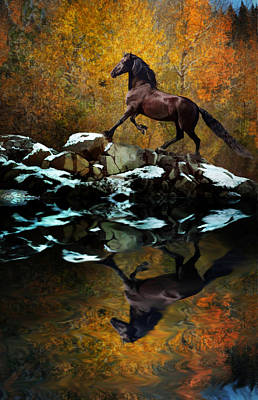 Photograph - Reflections Of Fall by Melinda Hughes-Berland