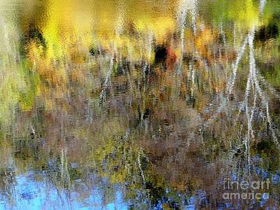 Photograph - Reflections Of Fall1 by Ed Weidman