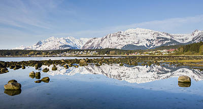 Reflections Of Haines Alaska Art Print by Tim Grams