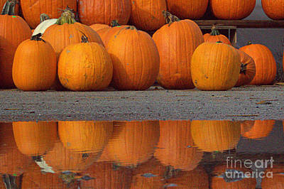 Photograph - Reflections Of Pumpkin by Jale Fancey
